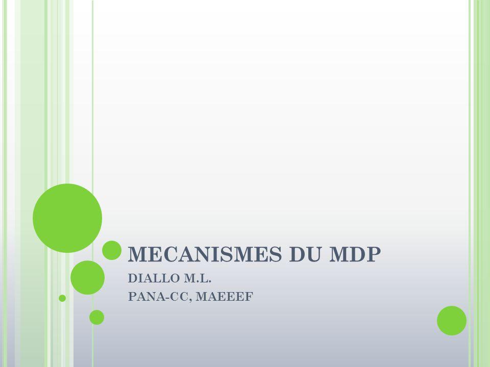 DIALLO M.L. PANA-CC, MAEEEF