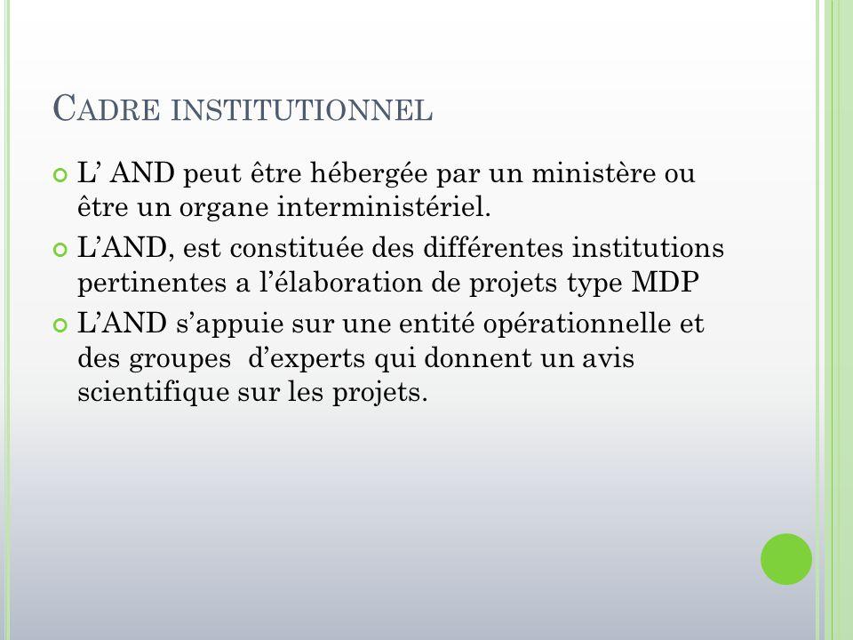 Cadre institutionnel L' AND peut être hébergée par un ministère ou être un organe interministériel.