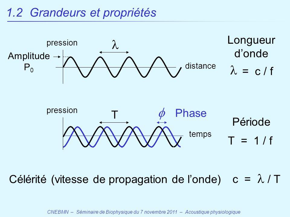 Célérité (vitesse de propagation de l'onde)