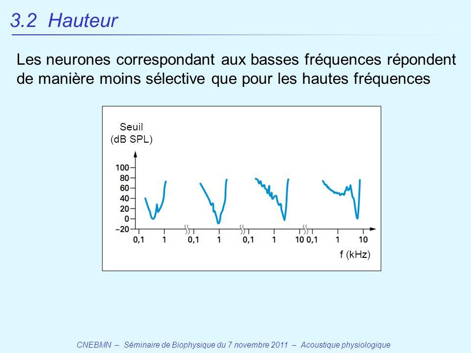 3.2 Hauteur Les neurones correspondant aux basses fréquences répondent de manière moins sélective que pour les hautes fréquences.