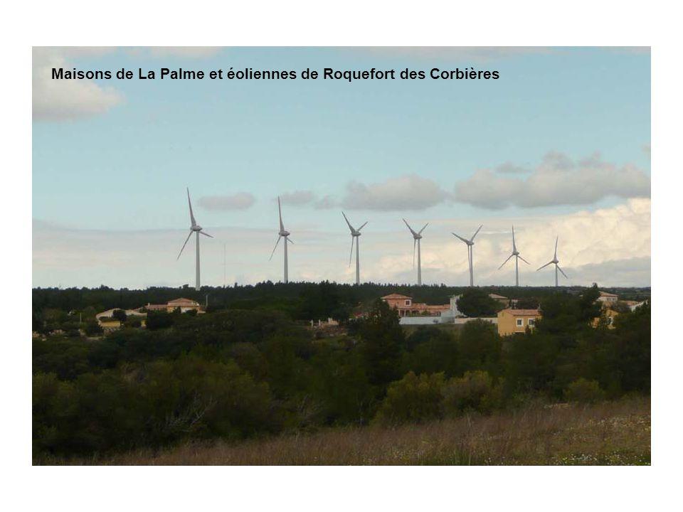 Maisons de La Palme et éoliennes de Roquefort des Corbières