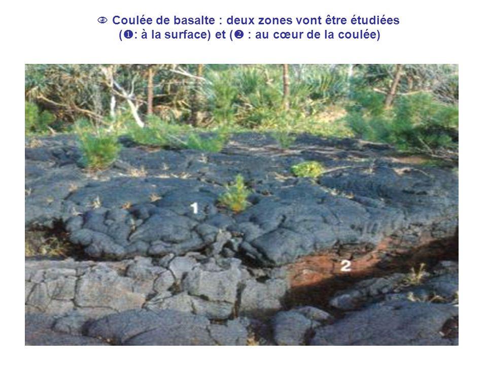  Coulée de basalte : deux zones vont être étudiées (: à la surface) et ( : au cœur de la coulée)