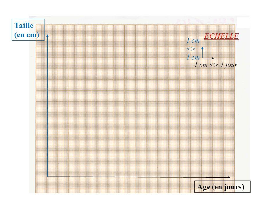 Taille (en cm) ECHELLE Age (en jours) 1 cm <>