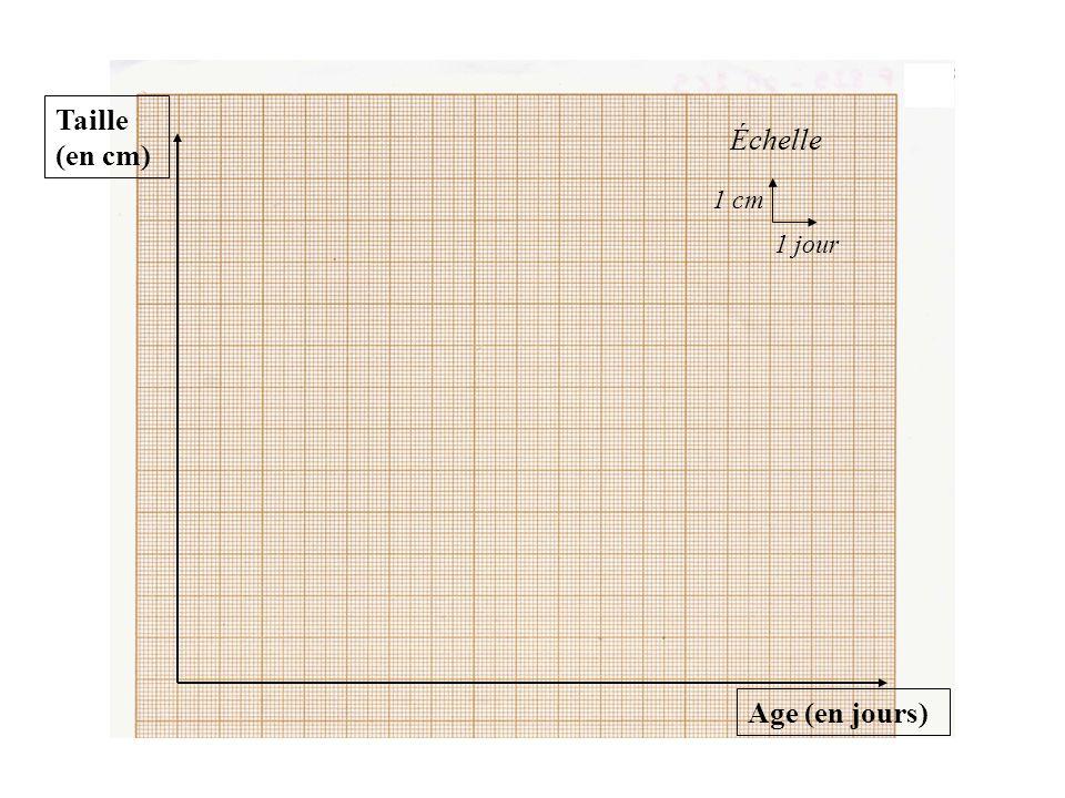 Taille (en cm) Échelle 1 cm 1 jour Age (en jours)