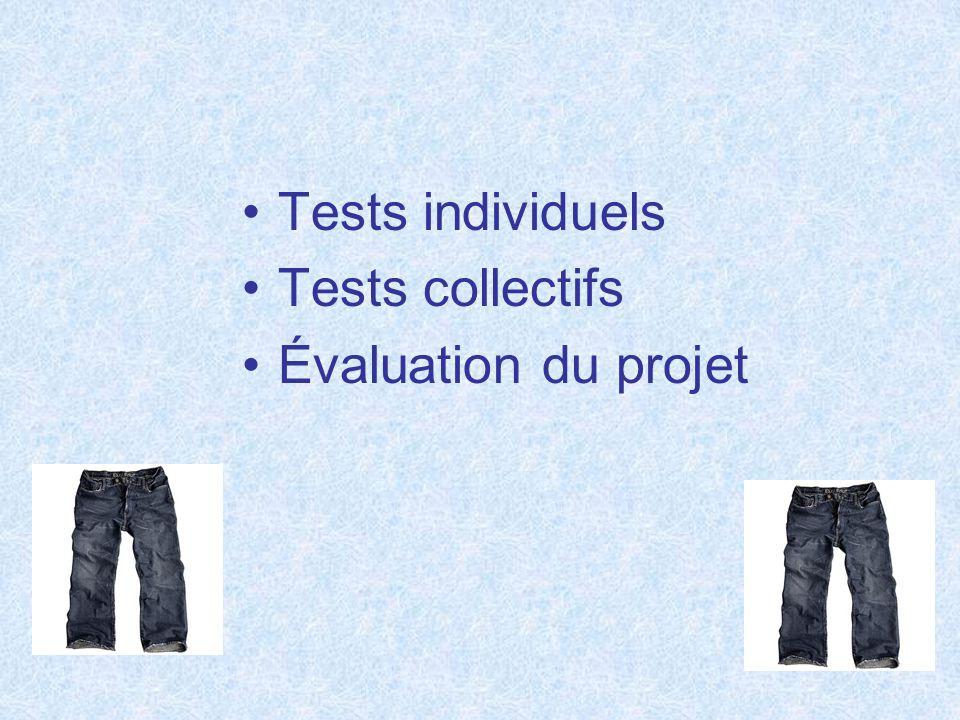 Tests individuels Tests collectifs Évaluation du projet