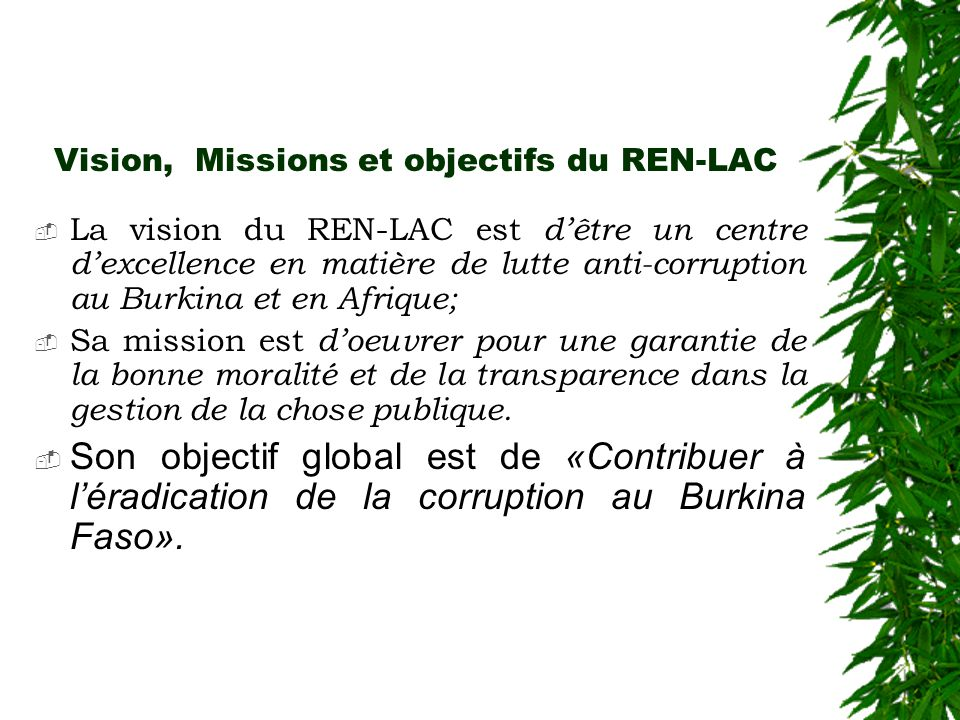 Vision, Missions et objectifs du REN-LAC