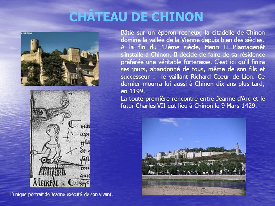 CHÂTEAU DE CHINON Bâtie sur un éperon rocheux, la citadelle de Chinon domine la vallée de la Vienne depuis bien des siècles.