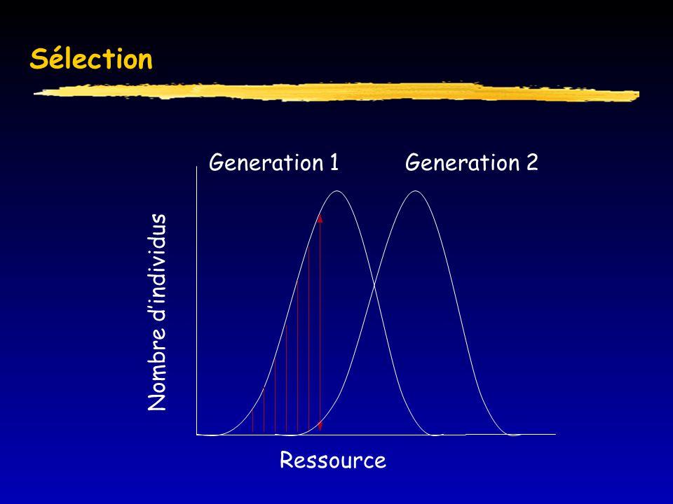 Sélection Generation 1 Generation 2 Ressource Nombre d'individus