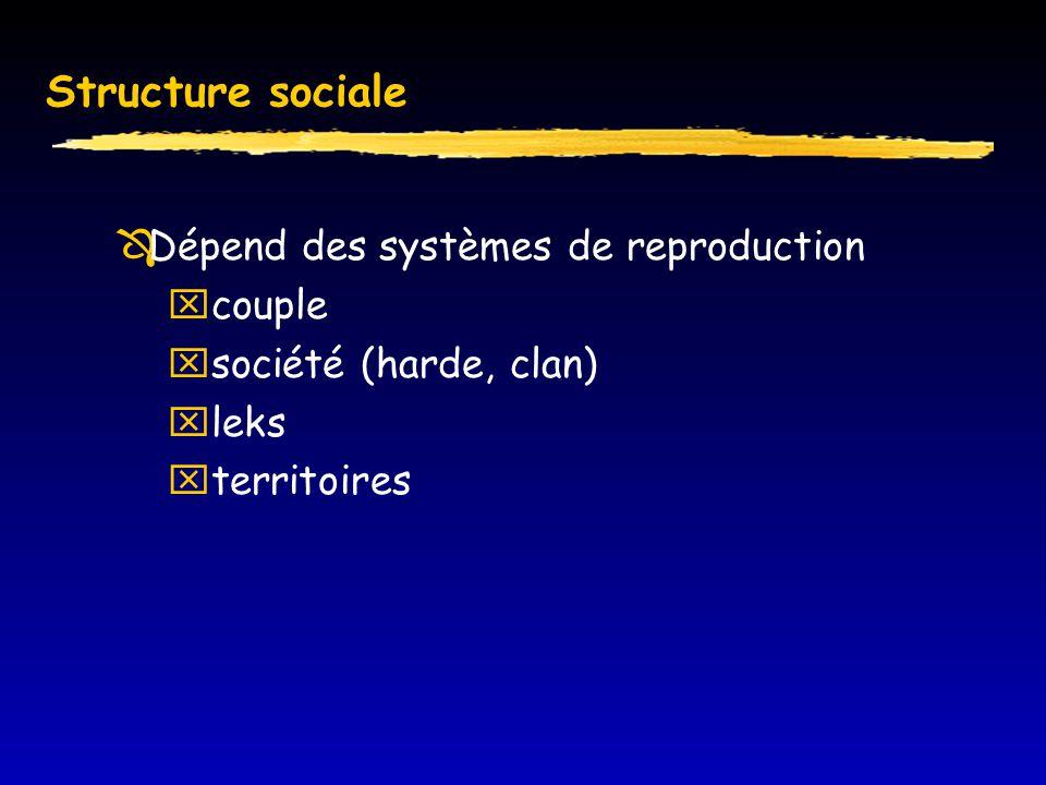 Structure sociale Dépend des systèmes de reproduction couple