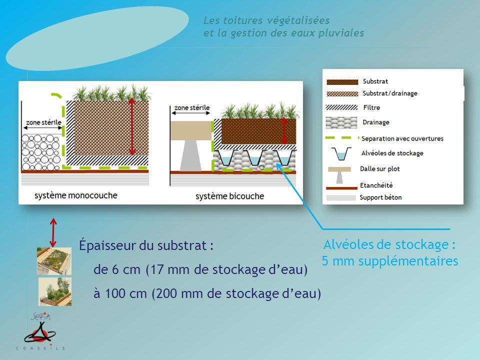 Épaisseur du substrat : de 6 cm (17 mm de stockage d'eau) à 100 cm (200 mm de stockage d'eau)