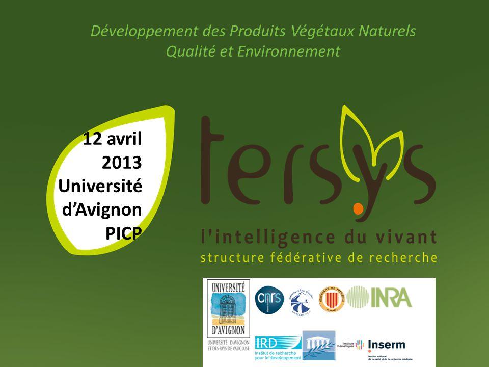 12 avril 2013 Université d'Avignon PICP
