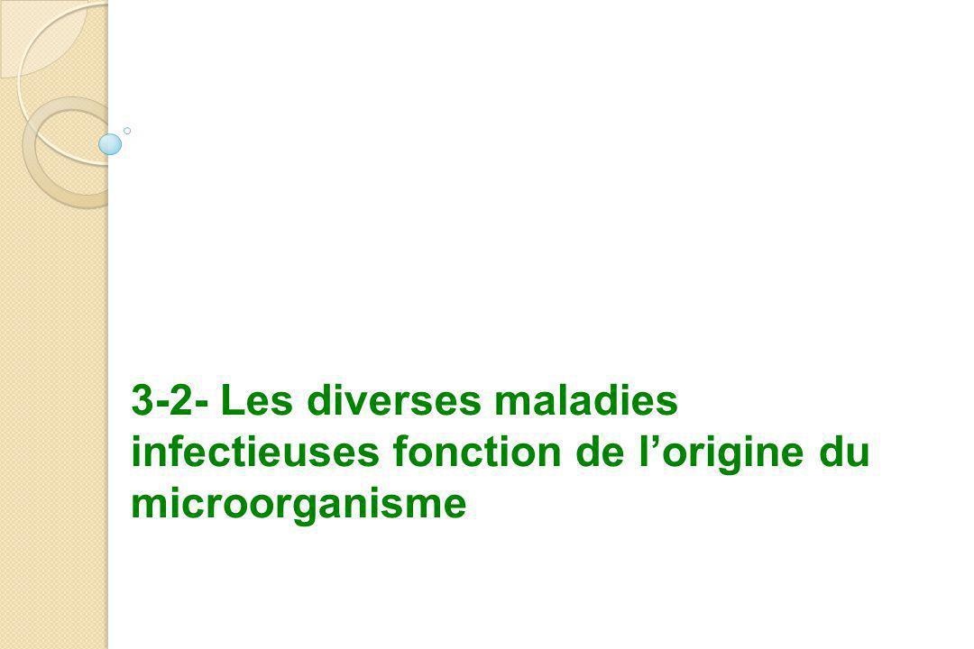 3-2- Les diverses maladies infectieuses fonction de l'origine du microorganisme