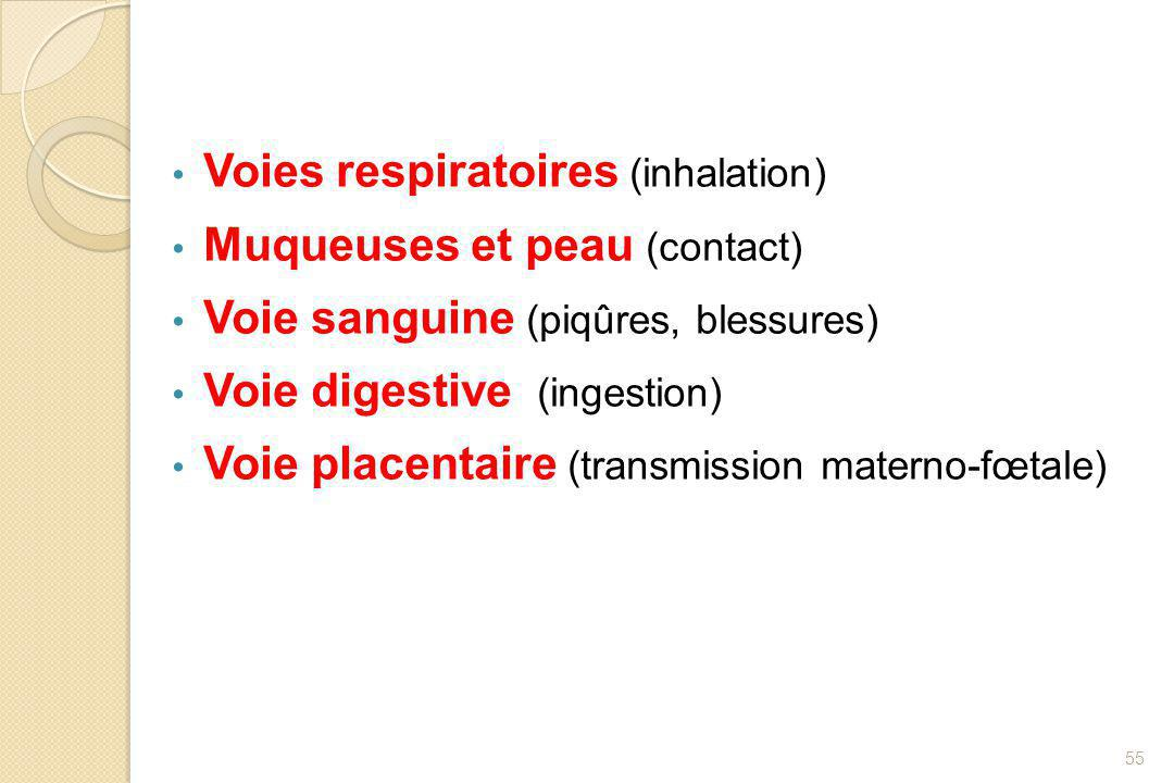 Voies respiratoires (inhalation)