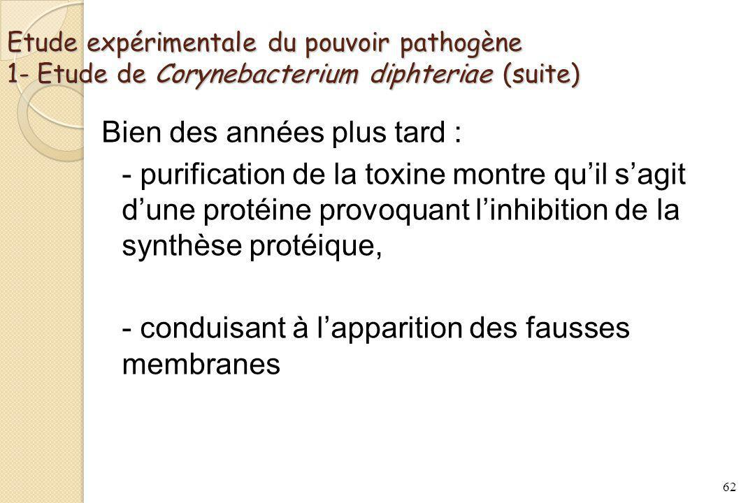 Etude expérimentale du pouvoir pathogène 1- Etude de Corynebacterium diphteriae (suite)