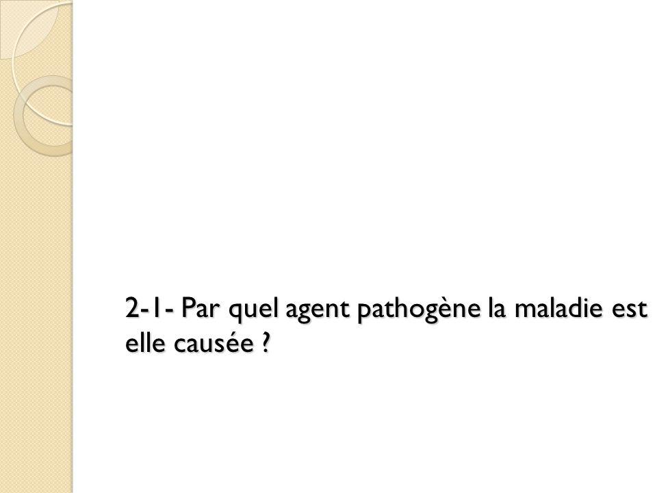 2-1- Par quel agent pathogène la maladie est elle causée