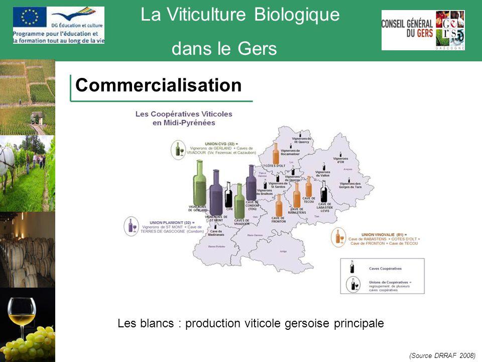 La Viticulture Biologique dans le Gers