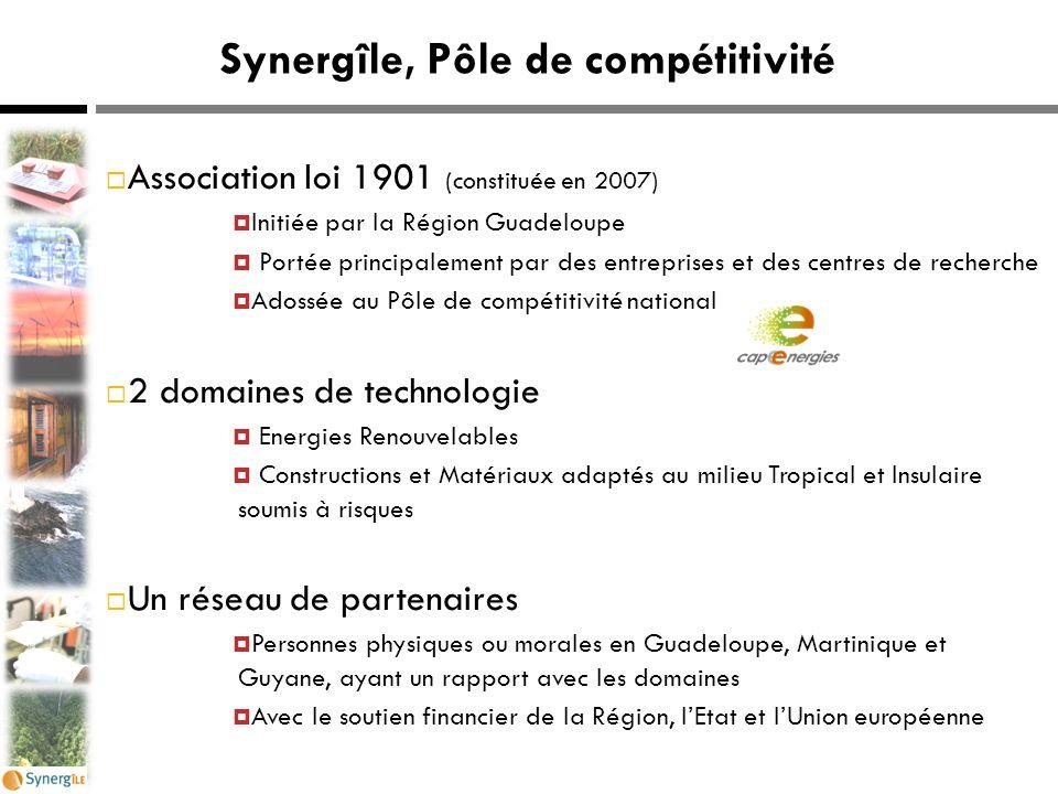 Synergîle, Pôle de compétitivité