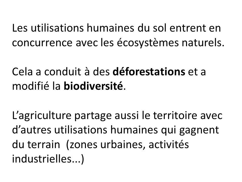 Les utilisations humaines du sol entrent en concurrence avec les écosystèmes naturels.