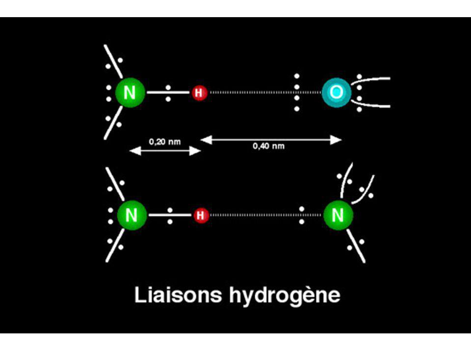 Dans une liaison ionique, la charge positive est portée par un ion, la charge négative par un autre.