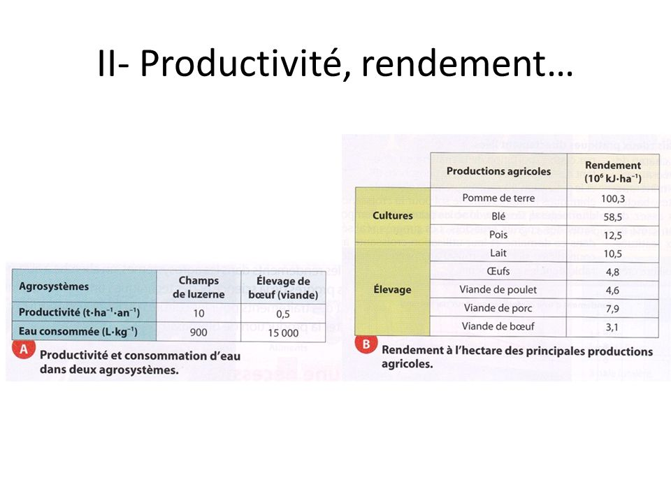 II- Productivité, rendement…