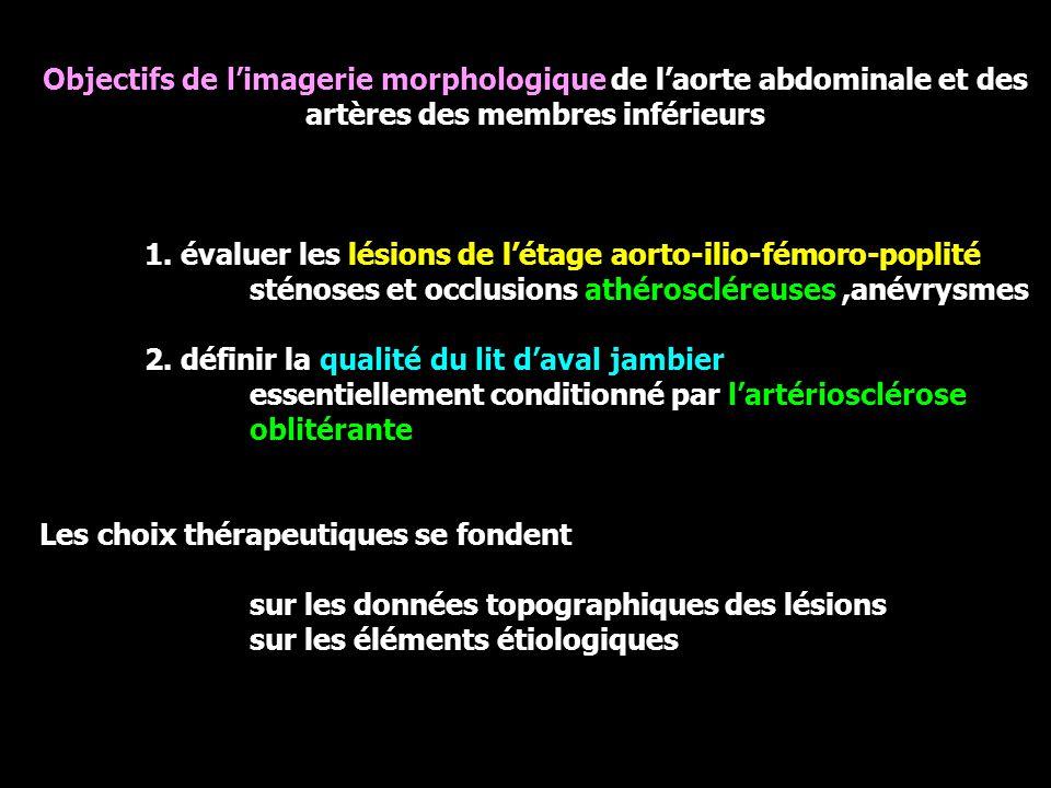Objectifs de l'imagerie morphologique de l'aorte abdominale et des artères des membres inférieurs