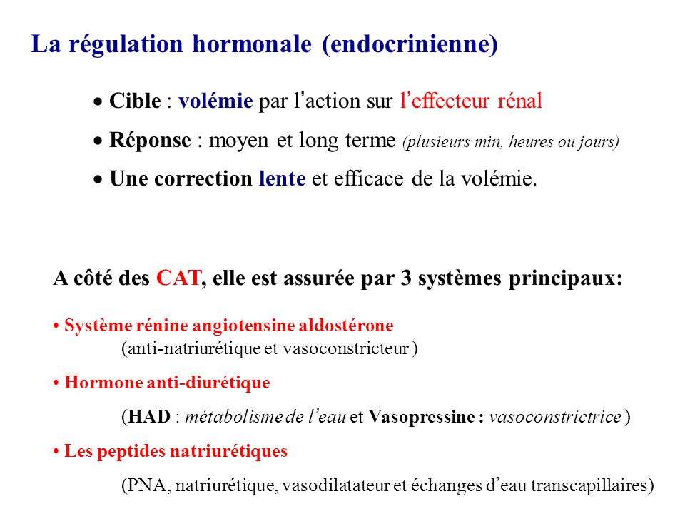 La régulation hormonale (endocrinienne)