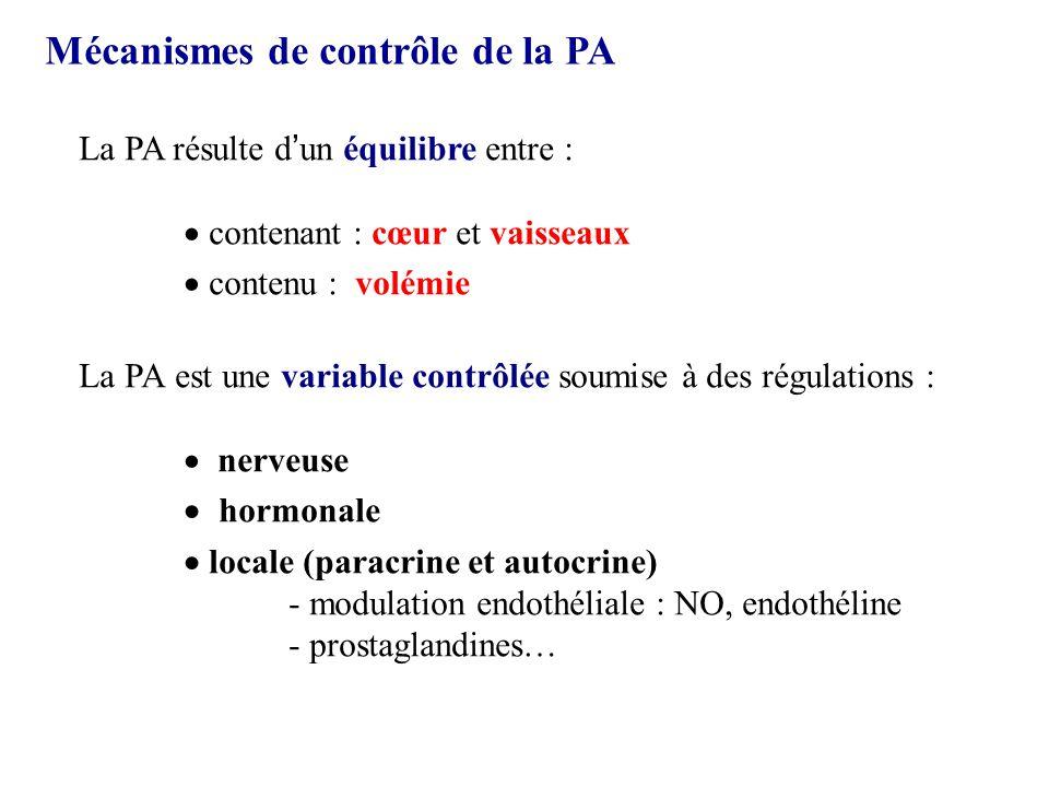 Mécanismes de contrôle de la PA