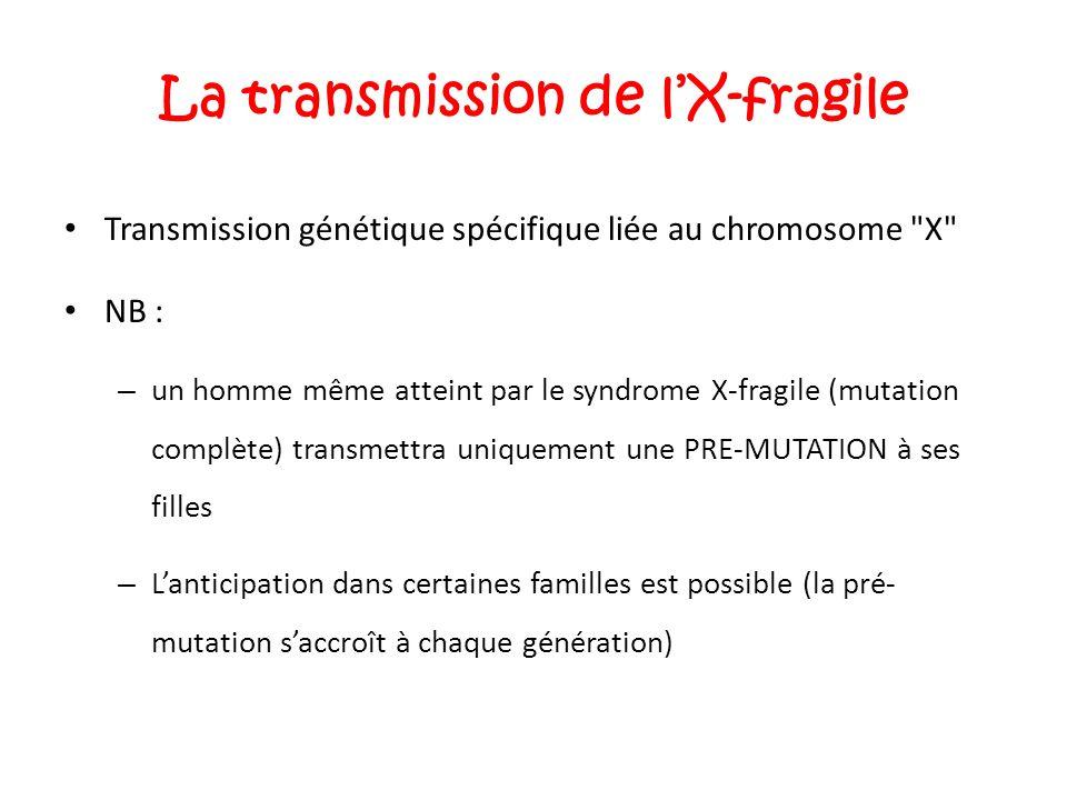La transmission de l'X-fragile