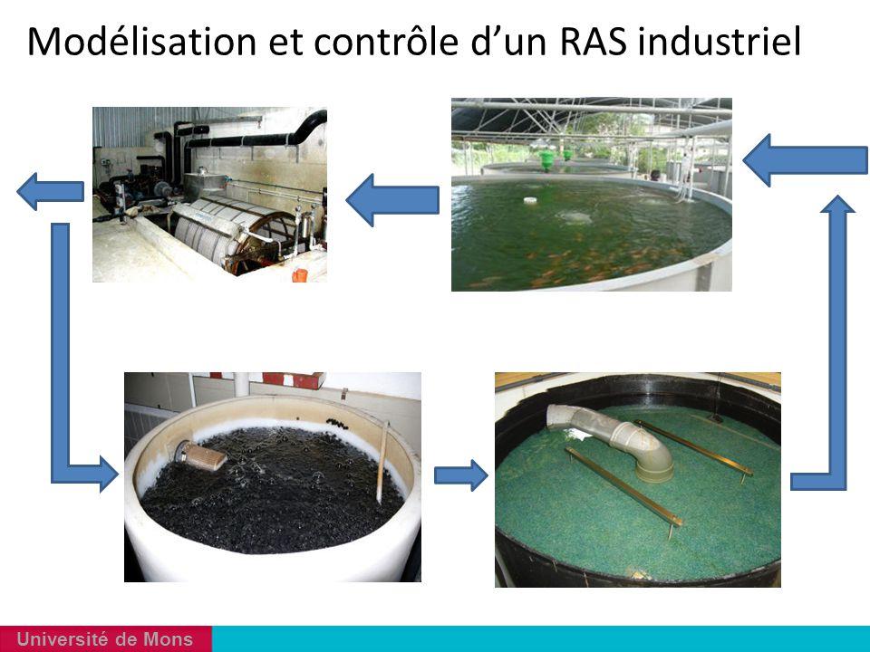 Modélisation et contrôle d'un RAS industriel