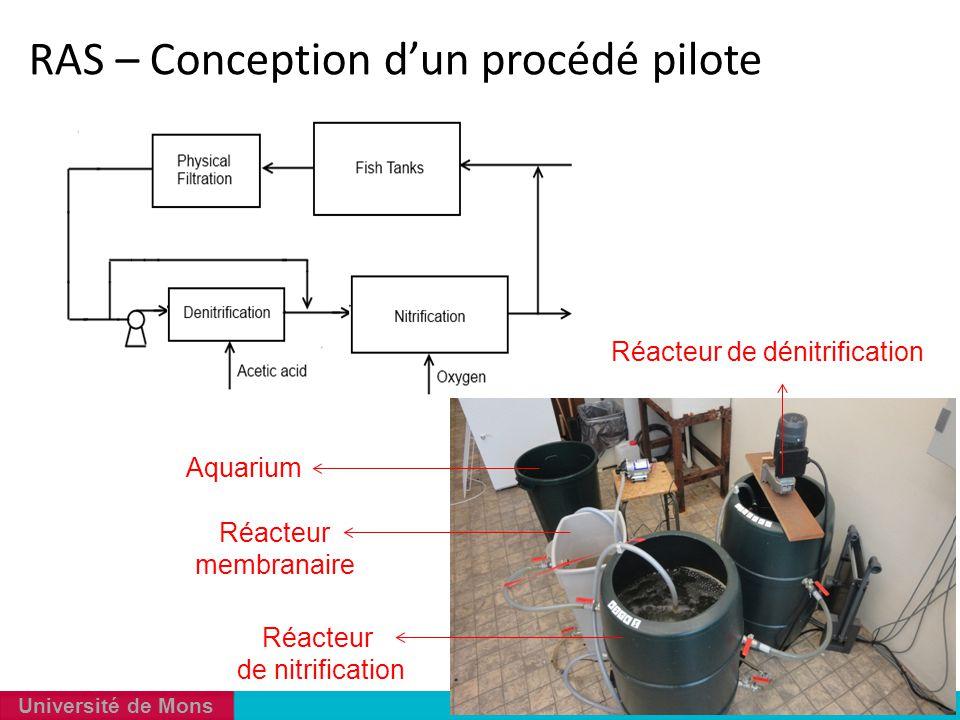 Réacteur de dénitrification