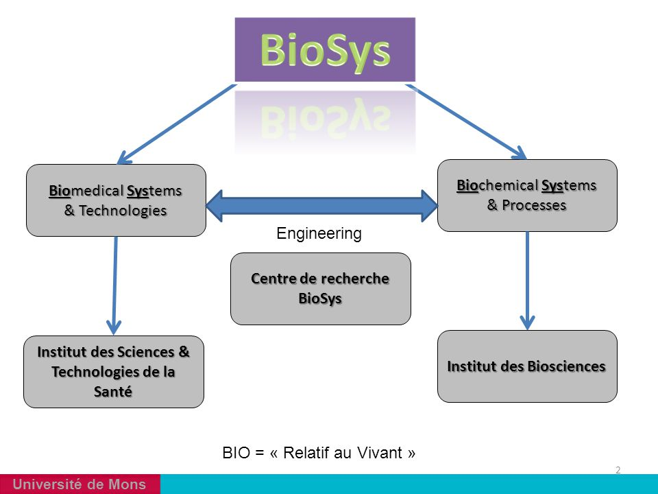BioSys Biochemical Systems & Processes Biomedical Systems