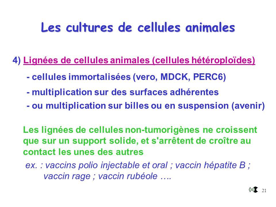 Les cultures de cellules animales