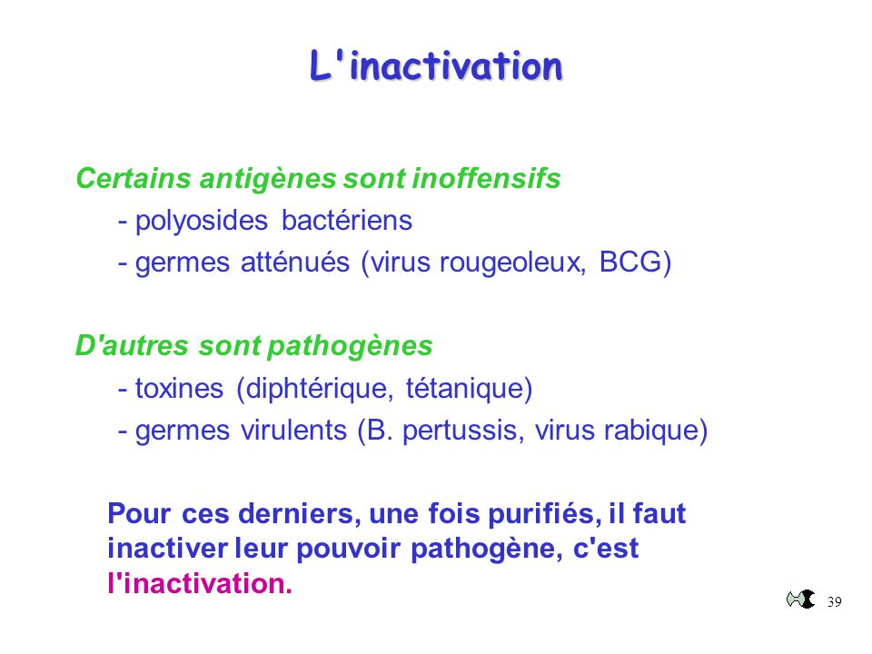 L inactivation Certains antigènes sont inoffensifs