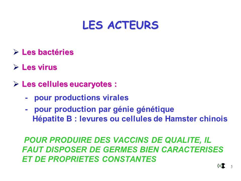 LES ACTEURS Les bactéries Les virus Les cellules eucaryotes :