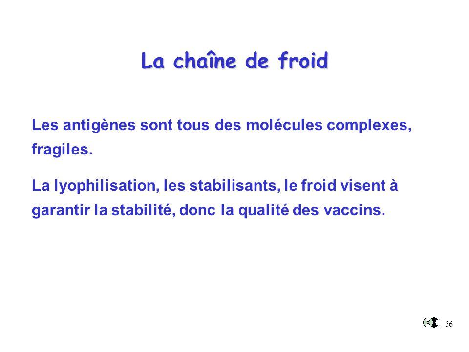 La chaîne de froid Les antigènes sont tous des molécules complexes, fragiles.