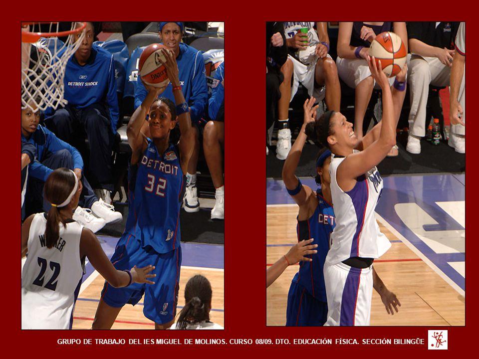 GRUPO DE TRABAJO DEL IES MIGUEL DE MOLINOS. CURSO 08/09. DTO