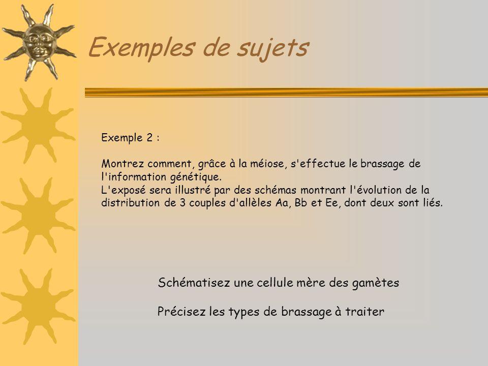 Exemples de sujets Schématisez une cellule mère des gamètes