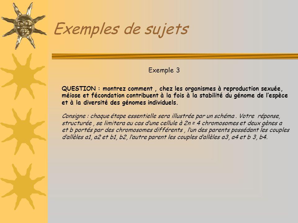 Exemples de sujets Exemple 3