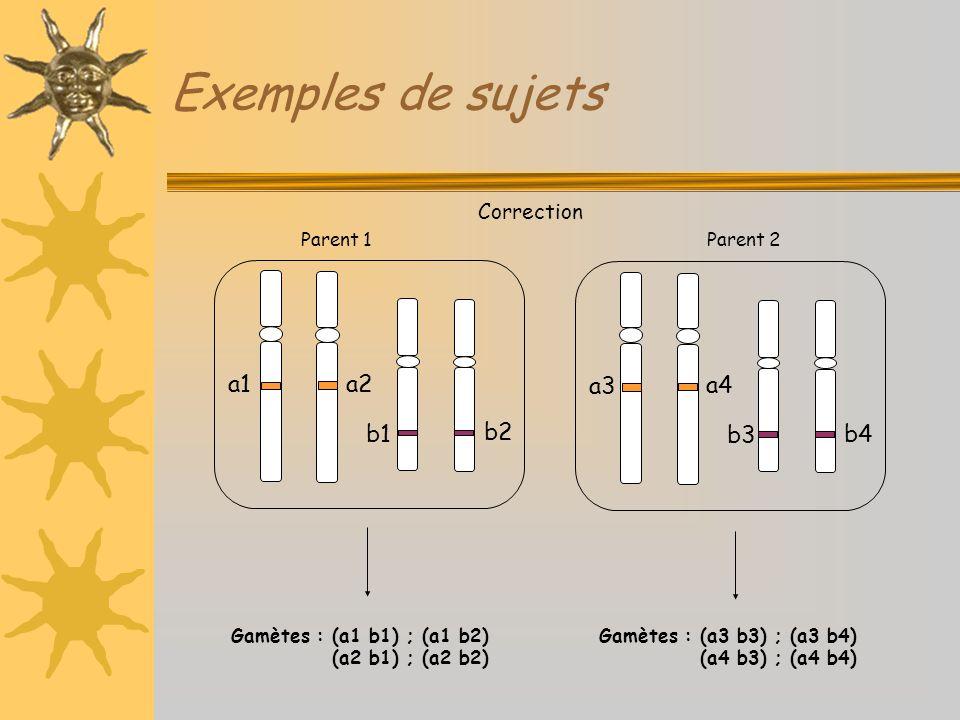 Exemples de sujets a1 a2 a3 a4 b1 b2 b3 b4 Correction Parent 1