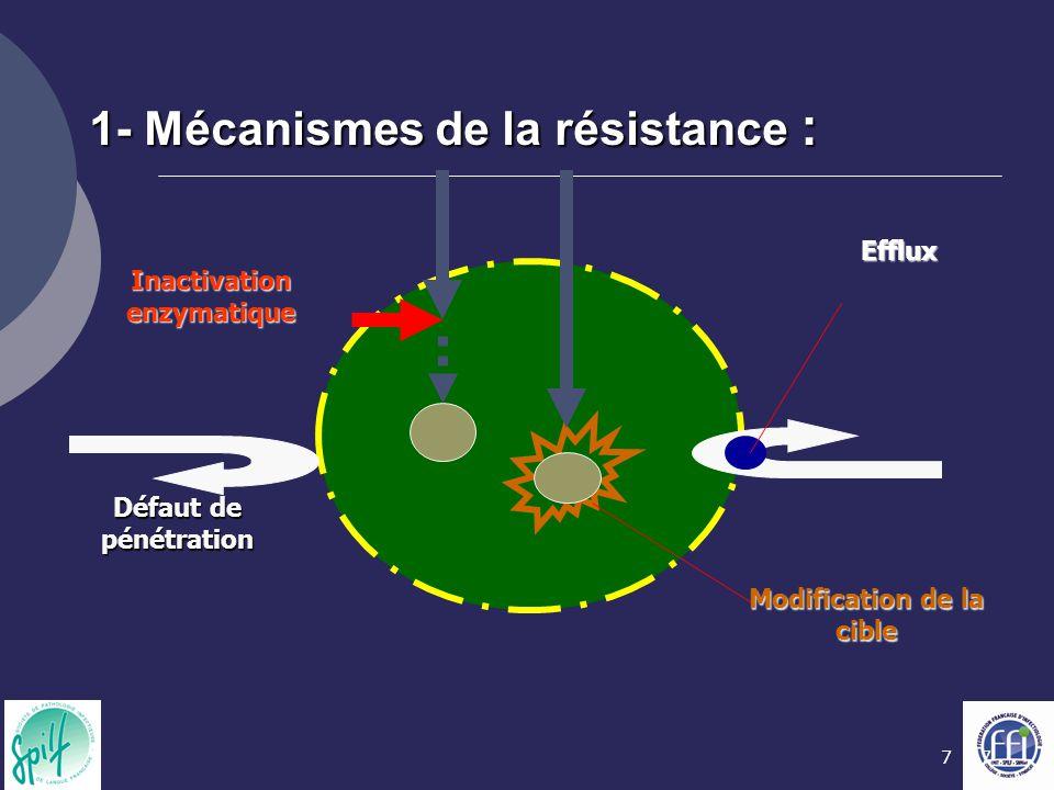 1- Mécanismes de la résistance :