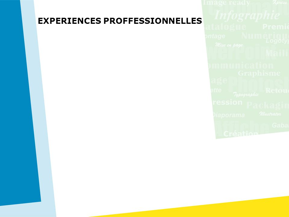 EXPERIENCES PROFFESSIONNELLES