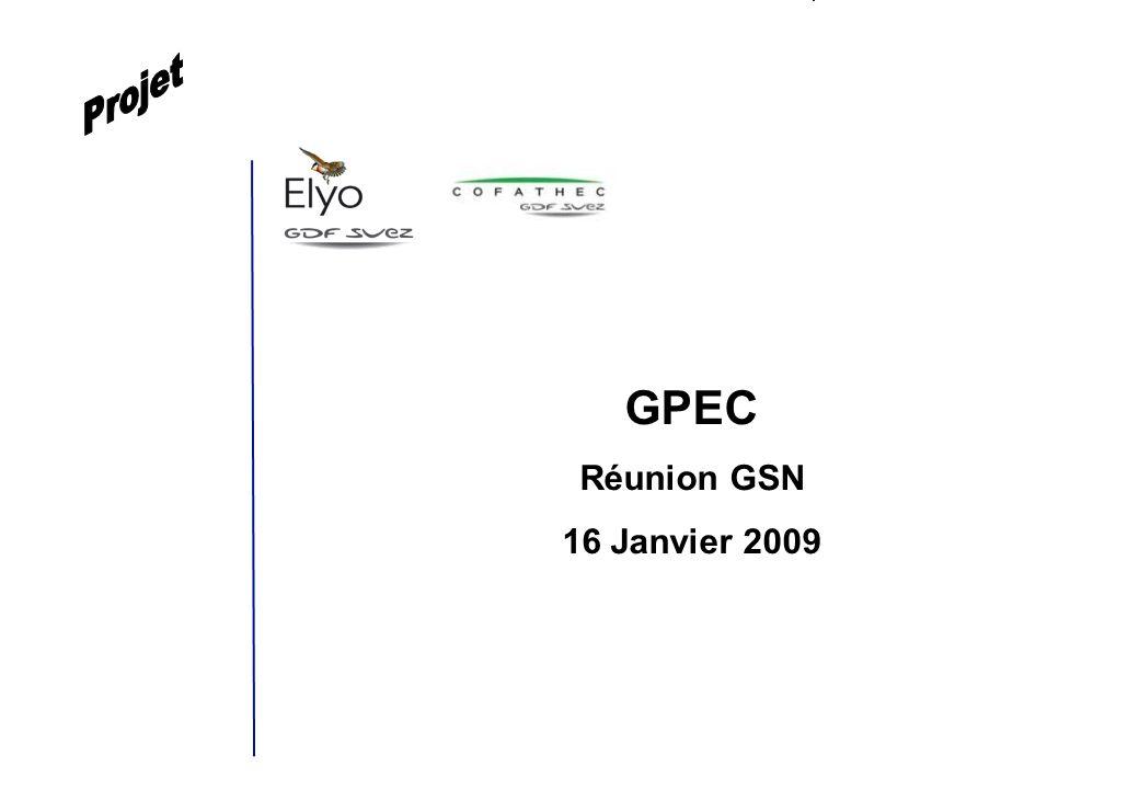 Projet GPEC Réunion GSN 16 Janvier 2009 1