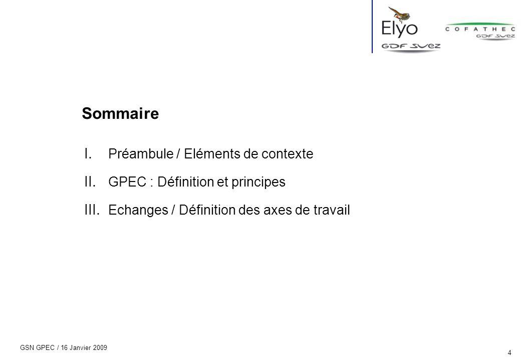 Sommaire Préambule / Eléments de contexte