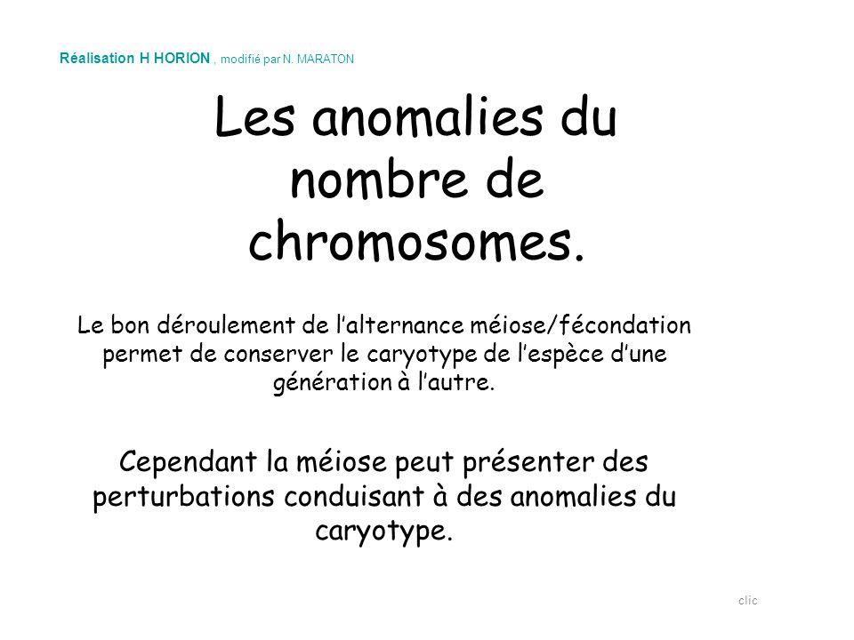 Les anomalies du nombre de chromosomes.