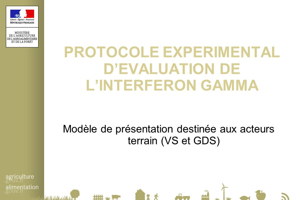 PROTOCOLE EXPERIMENTAL D'EVALUATION DE L'INTERFERON GAMMA