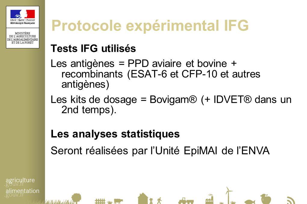 Protocole expérimental IFG
