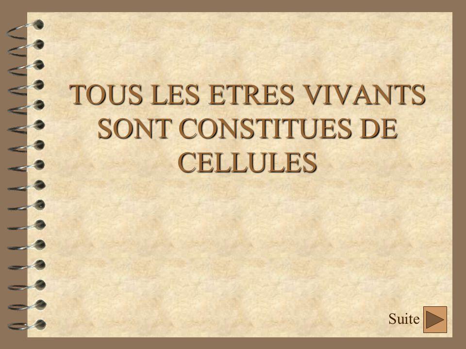 TOUS LES ETRES VIVANTS SONT CONSTITUES DE CELLULES