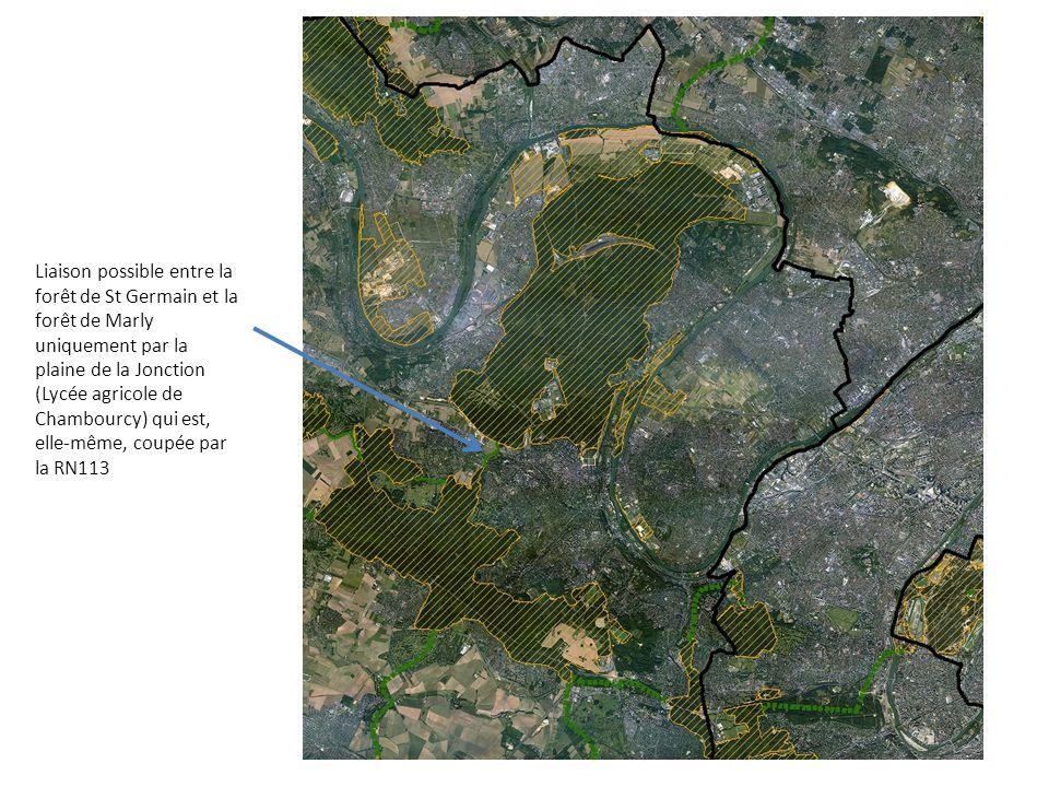 Liaison possible entre la forêt de St Germain et la forêt de Marly uniquement par la plaine de la Jonction (Lycée agricole de Chambourcy) qui est, elle-même, coupée par la RN113