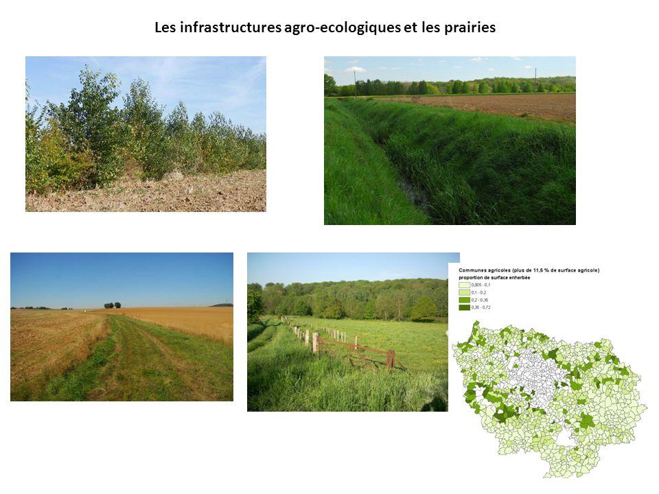 Les infrastructures agro-ecologiques et les prairies