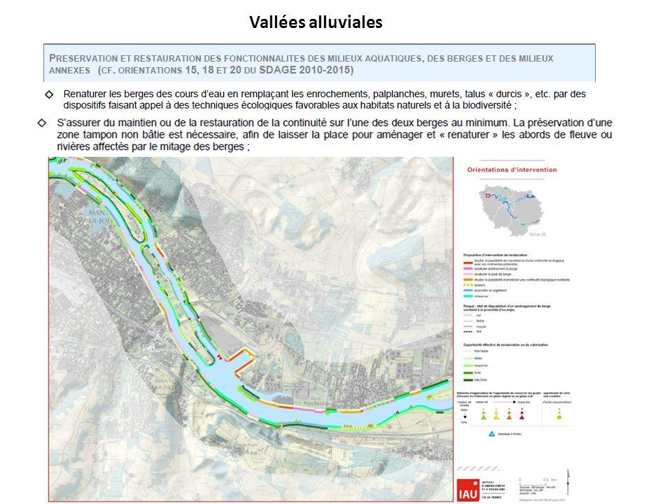 Vallées alluviales